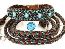 Halsband & riemen
