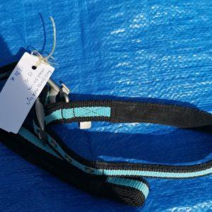 halsband en riem
