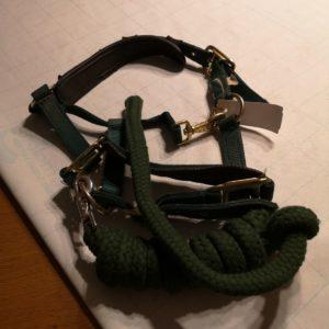 halster met touw