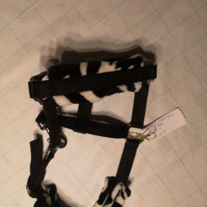 zebra print halster